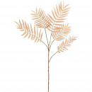 Chico branch pampas, 5 branches, L80cm, natural